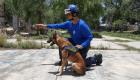 Entrenan a perros rescatistas simulando un juego de caza