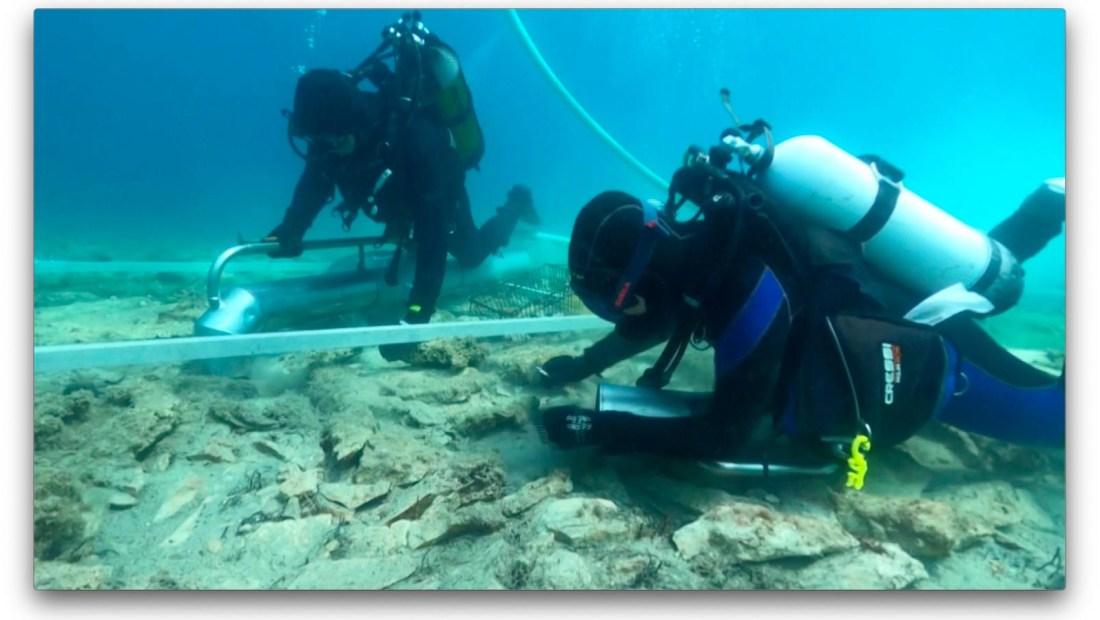 Descubren un asentamiento antiguo sepultado en el mar