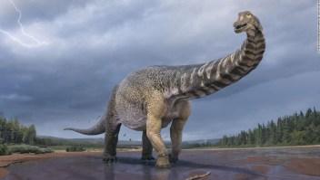 dinosaurio Australia