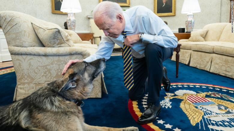 Champ Biden