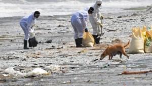 Desastre medioambiental Sri Lanka