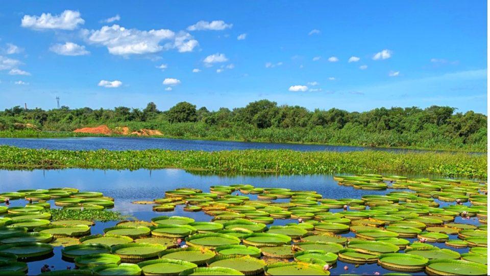 Viajar Paraguay Turismo