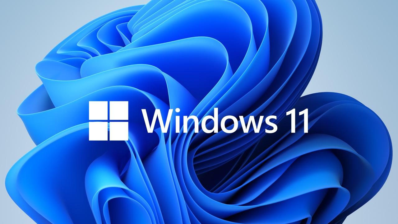 Windows 11 actualizacion