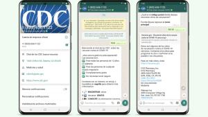chat-cdc-vacuna-whatsapp-español