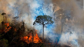 La sequía extrema y la deforestación están preparando la selva amazónica para una terrible temporada de incendios