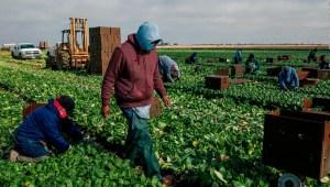 Un trabajador en EE.UU. gana 16 veces más que en México