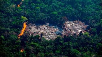 Alertan por emisiones de carbono en el Amazonas