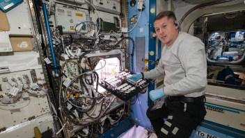 Astronautas cultivan chiles en estación espacial
