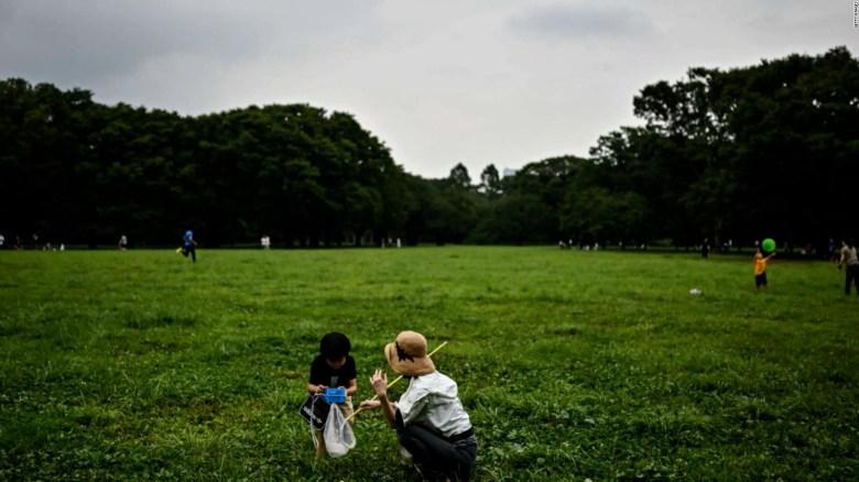 Niños en contacto con zonas verdes son más saludables