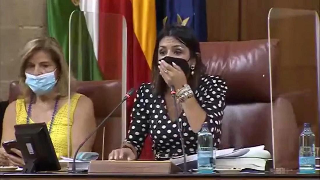 Rata gigante se cuela en el Parlamento de Andalucía