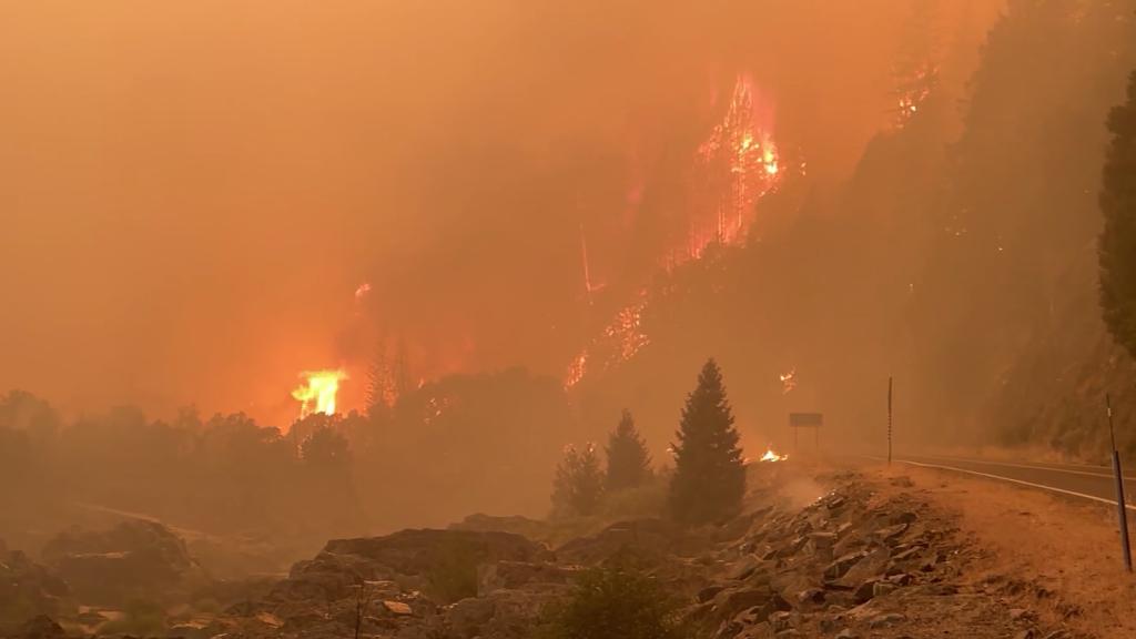 Ya son más de 85 los incendios forestales en EE.UU.