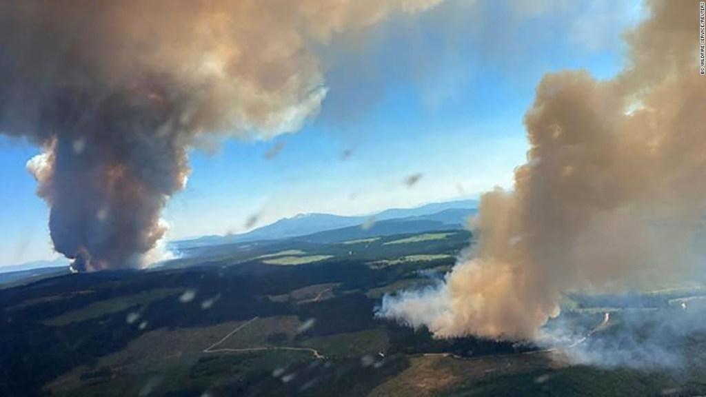 Calor sin precedentes, cientos de muertos y una ciudad destruida. El cambio climático está friendo el hemisferio norte