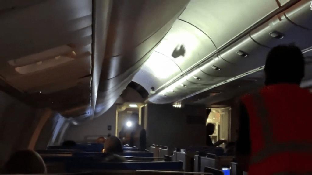 Varios pájaros se colaron en la cabina de un avión. Mira lo que hicieron para sacarlos