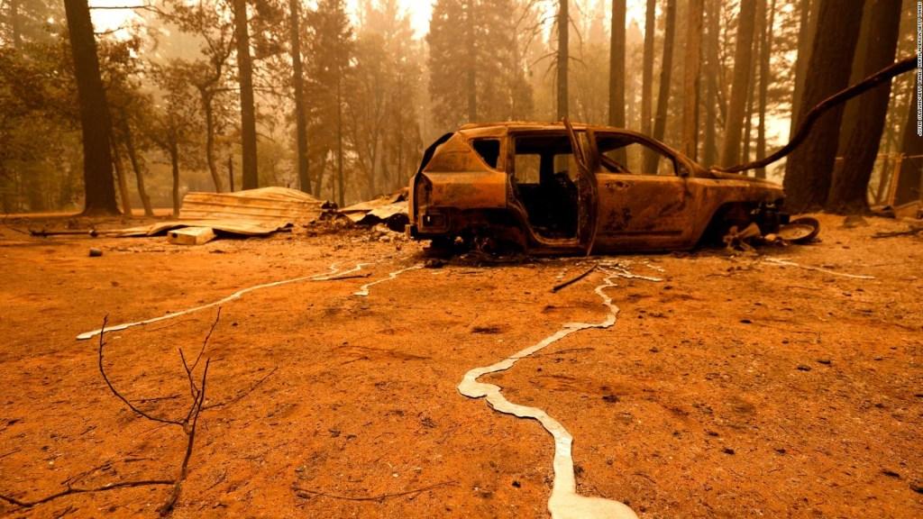 Los 5 estados más afectados por incendios en EE.UU.