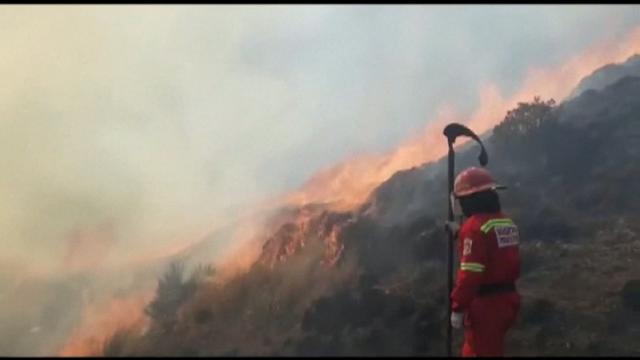 Incendio forestal en Perú