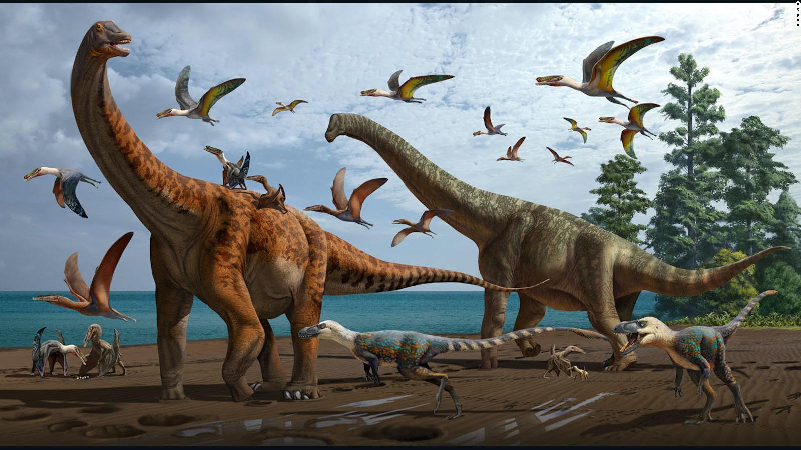 Descubren dos nuevas especies de dinosaurios en China