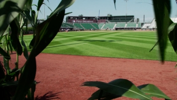 """Estadio inspirado en la cinta """"Field of dreams"""""""