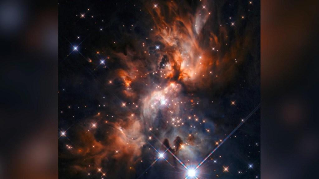Los secretos que guardan las estrellas bebé