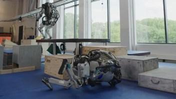 Mira como caen estos robots tras hacer parkour