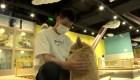 Los cafés con mascotas se hacen populares en China