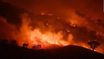 Estudio advierte sobre impacto de incendios forestales