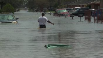 Ahora se registra posible ataque mortal de cocodrilo en inundación tras huracán Ida
