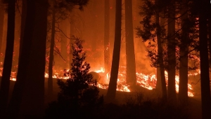 5 cosas: evacúan a 3 condados en California por incendio