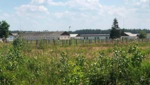 Exclusivo: Video muestra un posible campo de prisioneros para disidentes bielorrusos