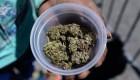 Vinculan consumo de cannabis con riesgo cardíaco