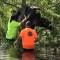 Rescatan a una vaca atrapada en un árbol tras el huracán Ida