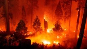 Fuertes vientos dificultan controlar el incendio Caldor