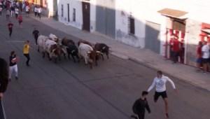 Vuelve la fiesta de toros en España