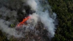 Dramático incendio forestal en la selva de la Amazonia