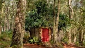 Winnie the Pooh renta su casa por Airbnb