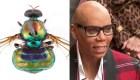 Australia nombra una mosca en honor a RuPaul
