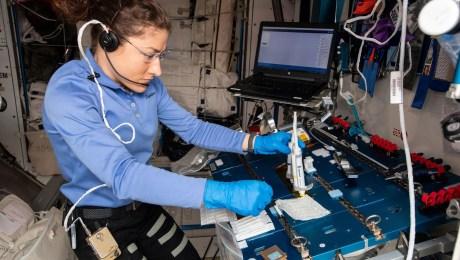 Proyectos de ADN de estudiantes llegan al espacio