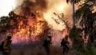 Las preocupantes consecuencias de los incendios en Bolivia
