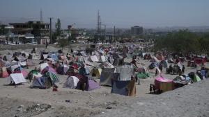 Talibanes enfrentan problemas para gobernar Afganistán
