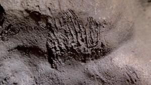 Una cueva da pistas sobre los neandertales