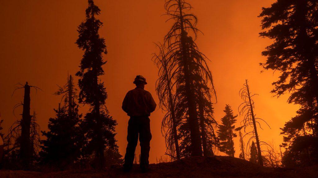 Un par de incendios forestales en California ahora amenazan a algunos de los árboles más grandes del mundo