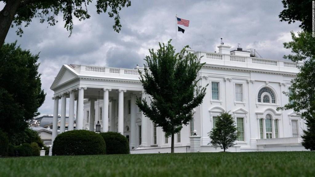Biden Trump academias