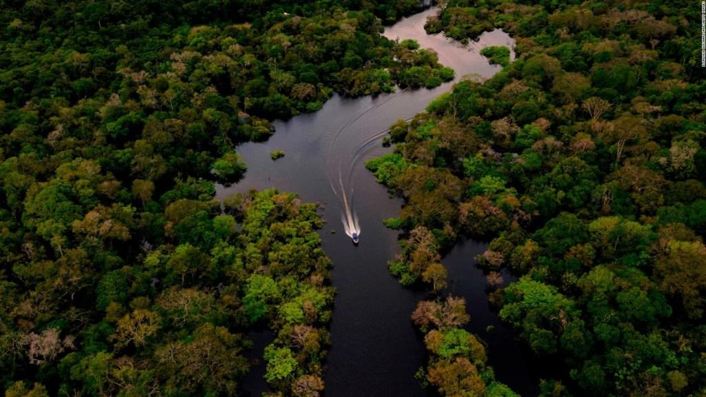 Facebook prohibirá venta de suelo protegido en  Amazonas