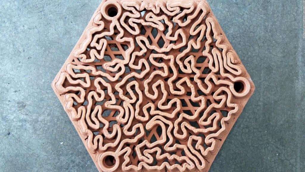 Así usan impresión 3D para rescatar corales en Hong Kong
