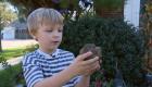 Niño de 6 años descubre fósil prehistórico en un arroyo