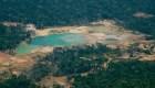 Despiertan gran preocupación incendios en el Amazonas