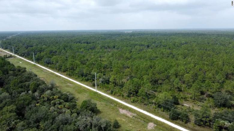 ¿Podría Brian Laundrie seguir vivo si está en la Reserva Carlton de Florida? Esto es lo que piensan expertos en supervivencia