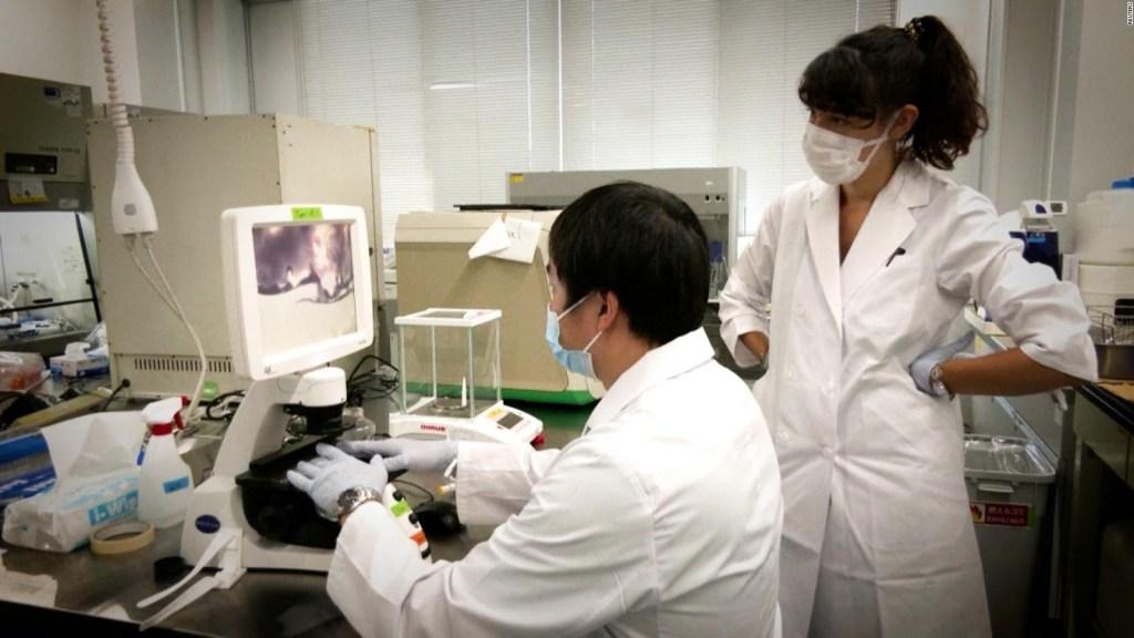 Mira cómo imprimen carne Kobe en Japón