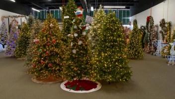 ¿Por qué te costará encontrar árboles de navidad este año?