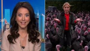 Reportera aplaude en vivo y esto hacen los pavos