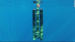 robot océano